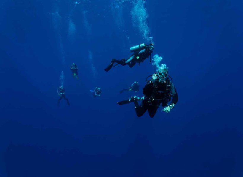 ©www.unterwasserfotografie.de_Udo Kefrig