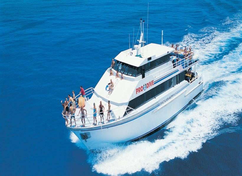 Pro Dive Cruises Cairns