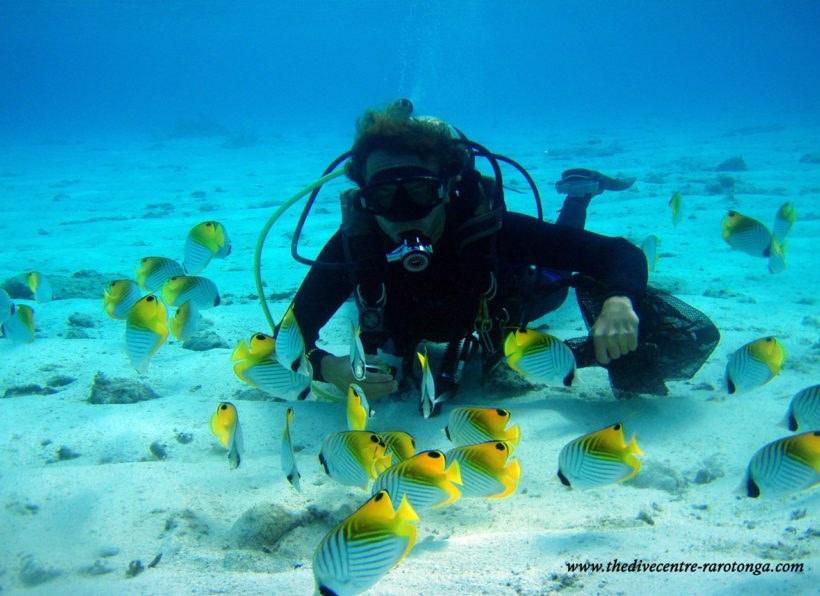 The Big Fish Dive Company