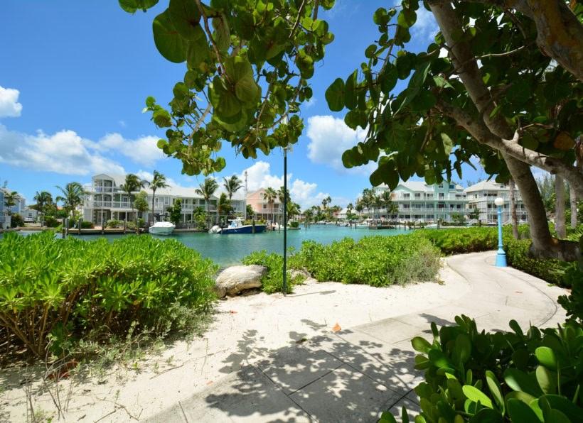 © Stuart Cove's Dive Bahamas/purimani/J. Hoppe