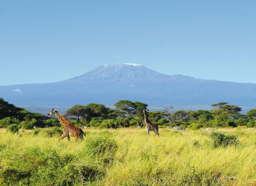 Amboseli NP Kilimanjaro
