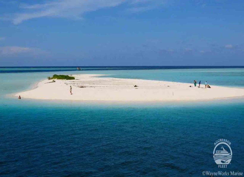MV Maldives Aggressor