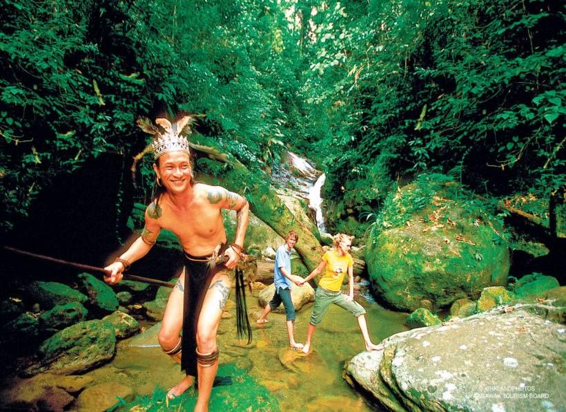 Naturwunder Borneos-Ai