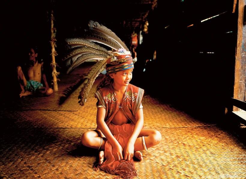 Naturwunder Borneos