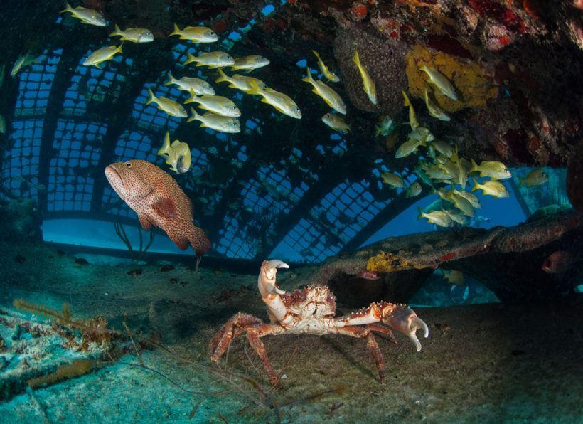 Turks and Caicos Explorer II