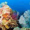 Bali-Diving-Academy-Temple-Pemuteran