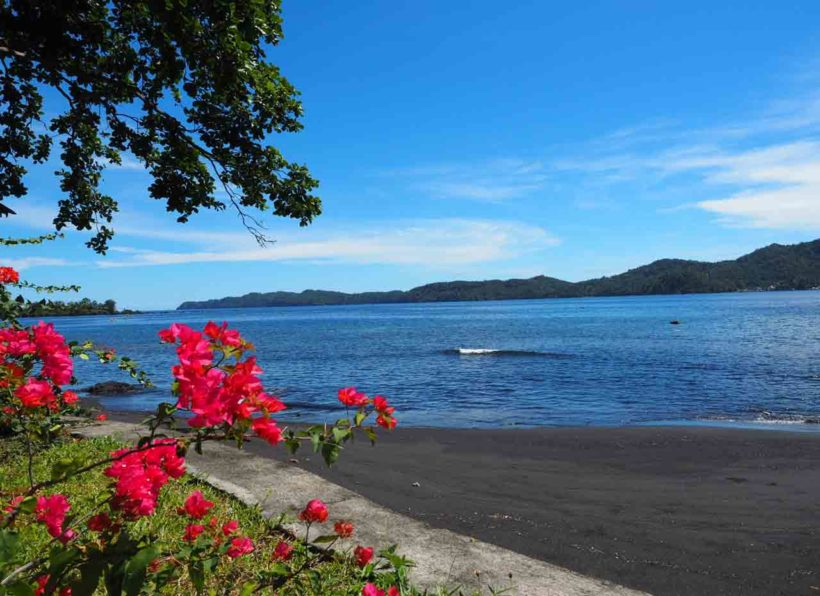 Dive Into Lembeh Strand