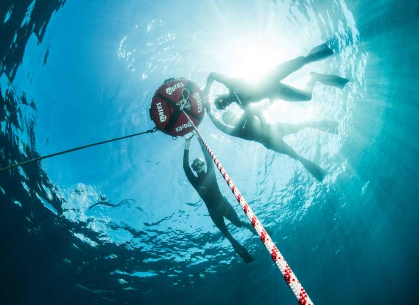 Manta Diving Madeira Apnoe