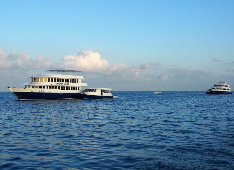 MV-Emperor-Virgo-Schiff-mit-Hintergrund