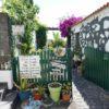 Joes Guesthouse Außenansicht Garten